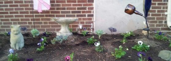 Garden In A Flower Pot Wards Corner