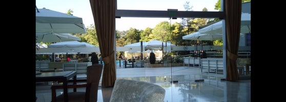 Sheraton Santiago Hotel And Convention Center 57 Tips