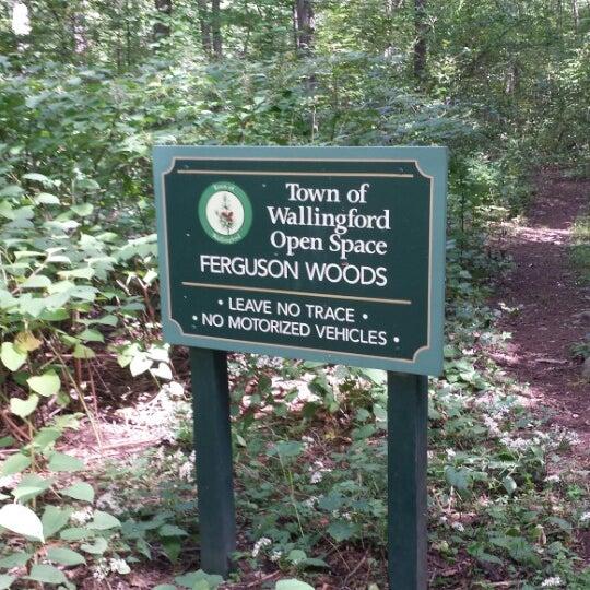 Ferguson Woods