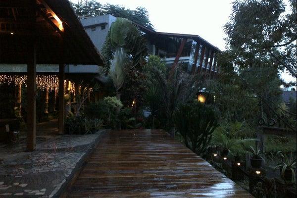 Congo Gallery & Cafe