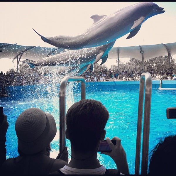 Photo prise au Miami Seaquarium par Ángel le9/2/2012