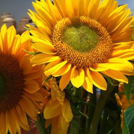Photo prise au Haven's Kitchen par Meghan B. le6/11/2012