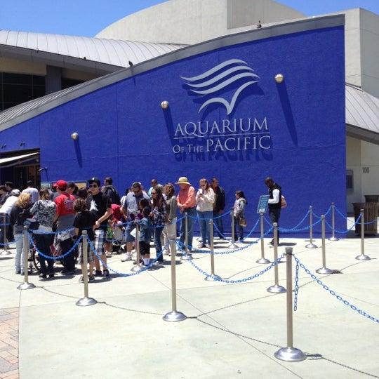 Das Foto wurde bei Aquarium of the Pacific von Shannon P. am 5/26/2012 aufgenommen