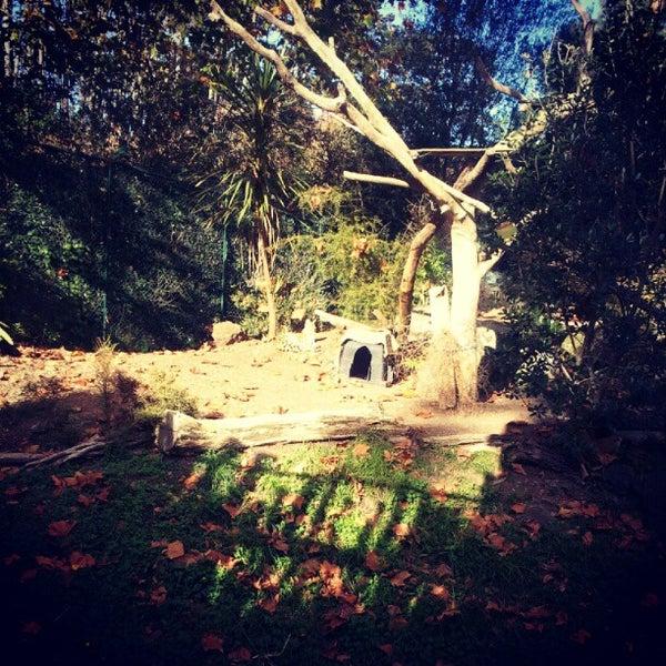 5/24/2012 tarihinde Liam S.ziyaretçi tarafından Auckland Zoo'de çekilen fotoğraf