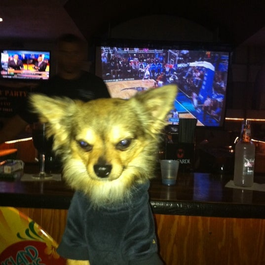 Nice place to have a drink and watch sports; and it's also a dog-friendly!