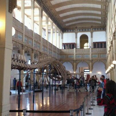 8/26/2012にTakashi M.がMuseo Nacional de Historia Naturalで撮った写真