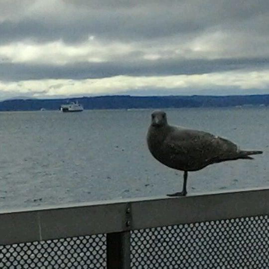 Das Foto wurde bei Waterfront Park von Will K. am 1/31/2012 aufgenommen