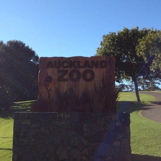 7/7/2012 tarihinde Maggie T.ziyaretçi tarafından Auckland Zoo'de çekilen fotoğraf
