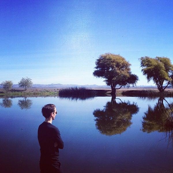 รูปภาพถ่ายที่ Ram's Gate Winery โดย Andria เมื่อ 10/27/2012