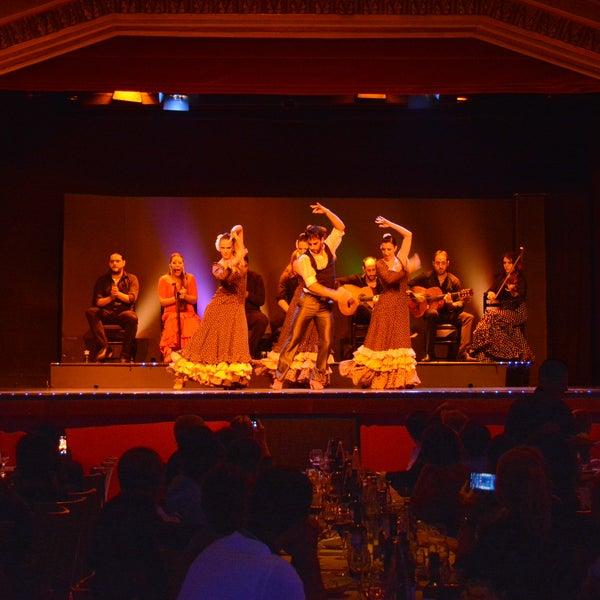 11/11/2014にPalacio del FlamencoがPalacio del Flamencoで撮った写真