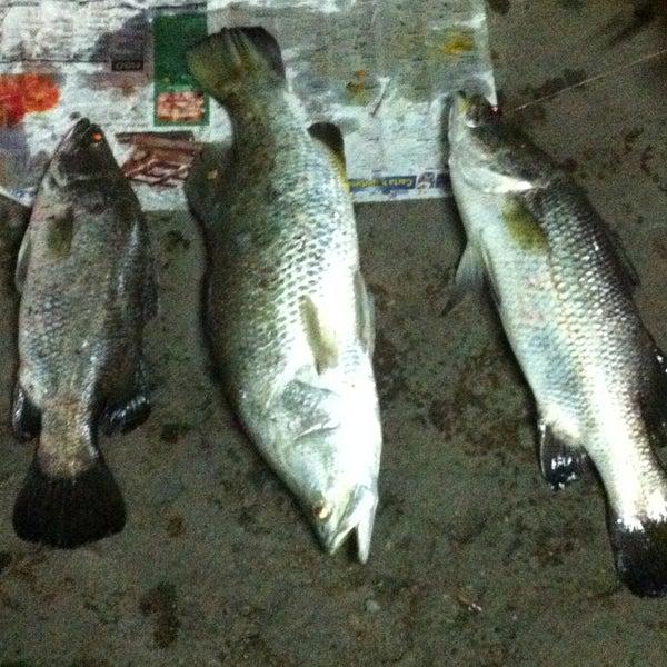 Photos At Sentul Sportfishing Lake In Taman Pelangi