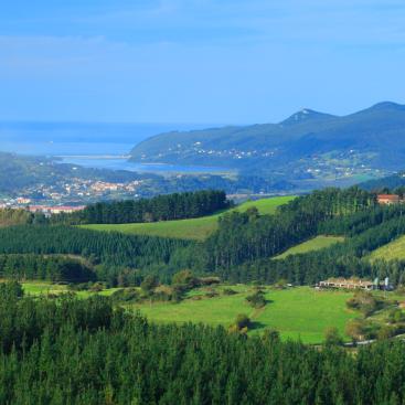 Das Foto wurde bei Bodega Berroja von Bodega Berroja am 12/4/2014 aufgenommen