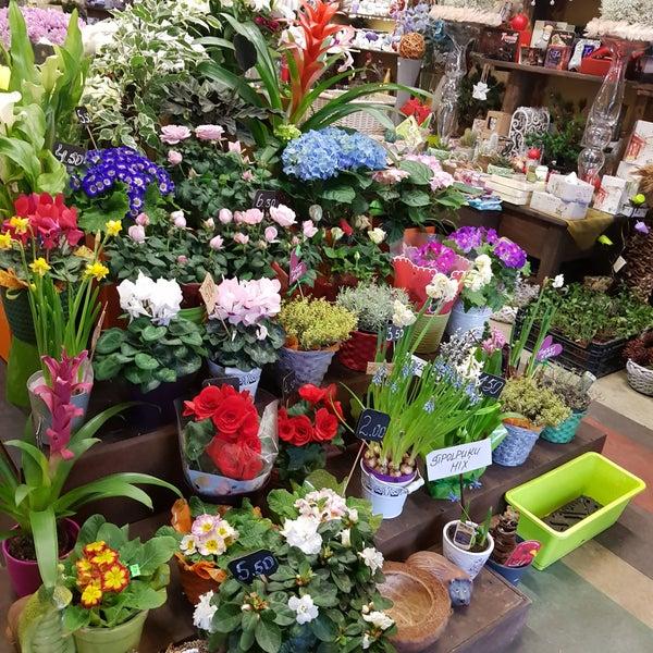 Дизайнерские, магазин цветов в риге