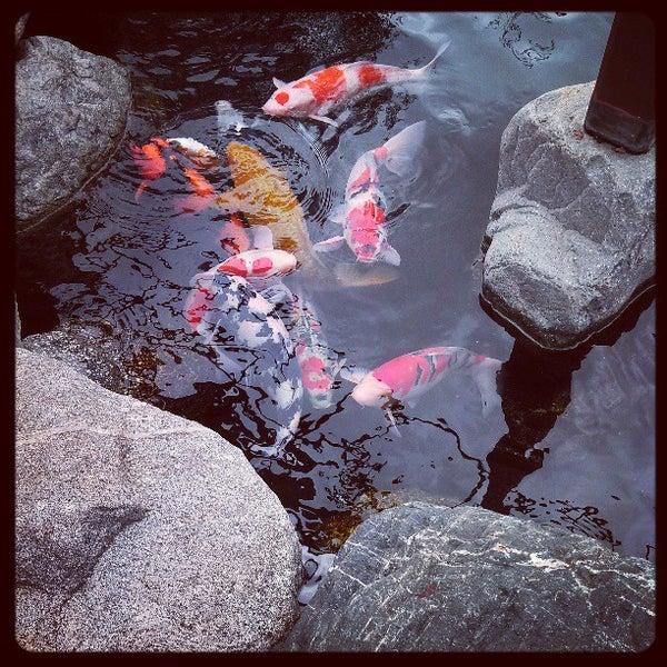 3/9/2013にJolie N.がJapanese Friendship Gardenで撮った写真
