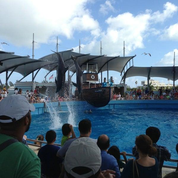 Снимок сделан в Miami Seaquarium пользователем Terri O. 1/13/2013