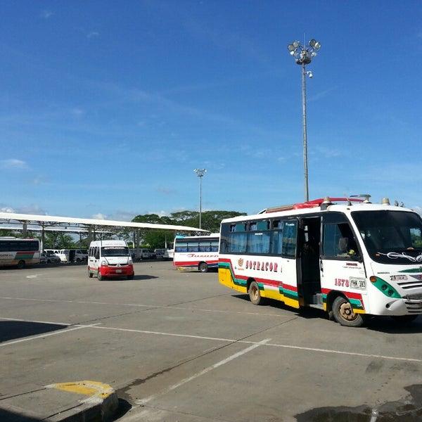 Terminal De Transporte De Monteria Cll 41 20 11