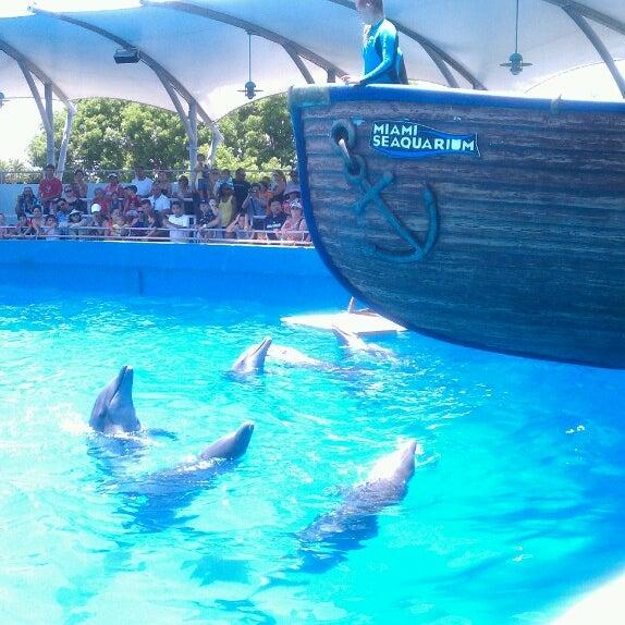 6/10/2013에 Patricia님이 Miami Seaquarium에서 찍은 사진