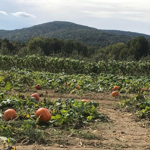 Снимок сделан в Fishkill Farms пользователем Marina S. 10/14/2018