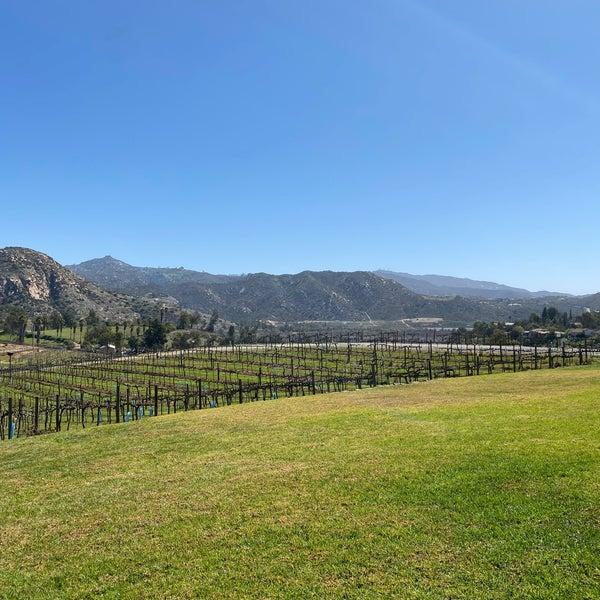 รูปภาพถ่ายที่ Orfila Vineyards and Winery โดย Allie B. เมื่อ 3/10/2021