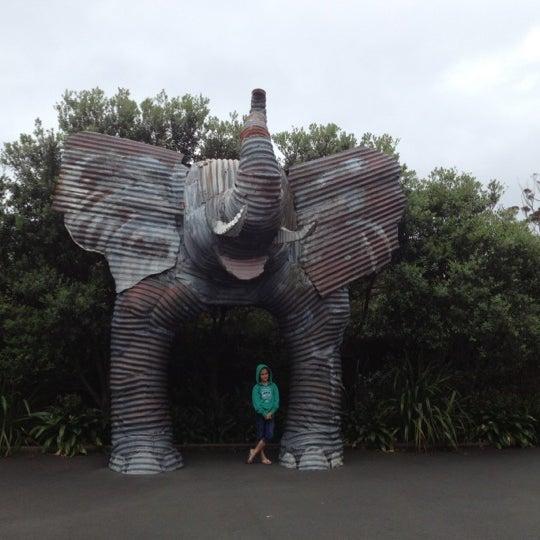 12/2/2012 tarihinde Darren D.ziyaretçi tarafından Auckland Zoo'de çekilen fotoğraf