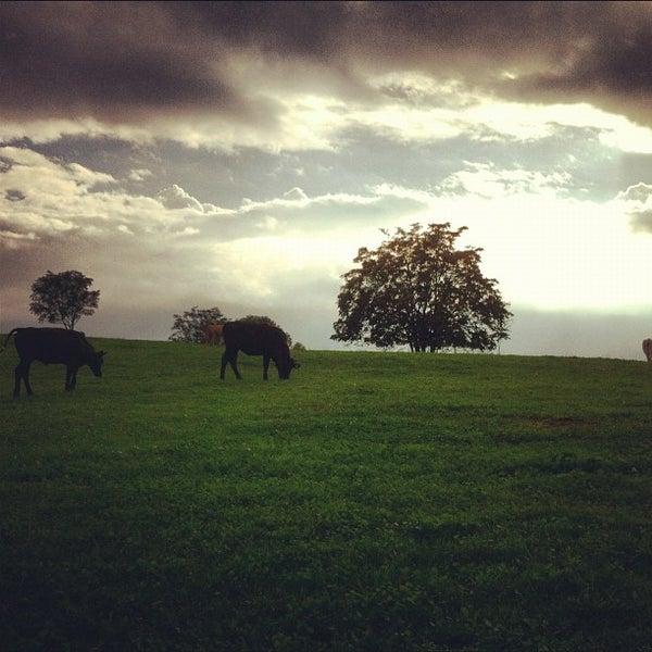 10/9/2012にPaolo C.がParco Regionale dell'Appia Anticaで撮った写真