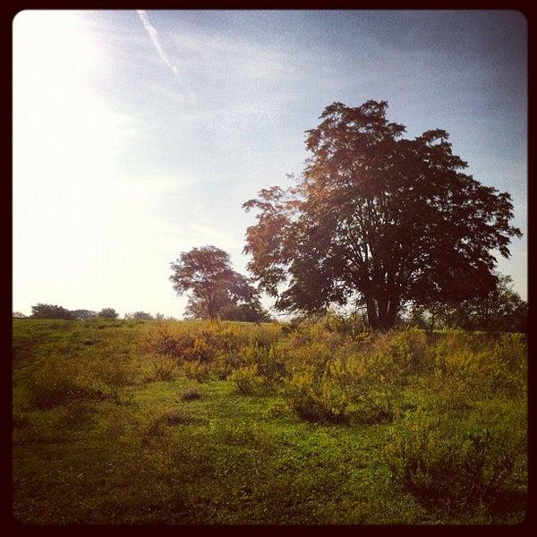 10/11/2012にPaolo C.がParco Regionale dell'Appia Anticaで撮った写真