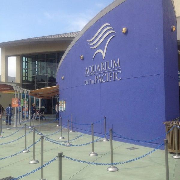 Das Foto wurde bei Aquarium of the Pacific von Roberto M. am 5/4/2013 aufgenommen