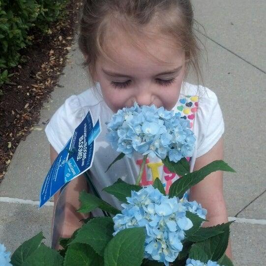 6/2/2013 tarihinde Kayleigh V.ziyaretçi tarafından Walmart'de çekilen fotoğraf
