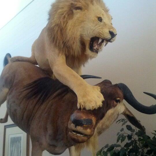 Foto tirada no(a) Las Vegas Natural History Museum por Zoey C. em 11/4/2012