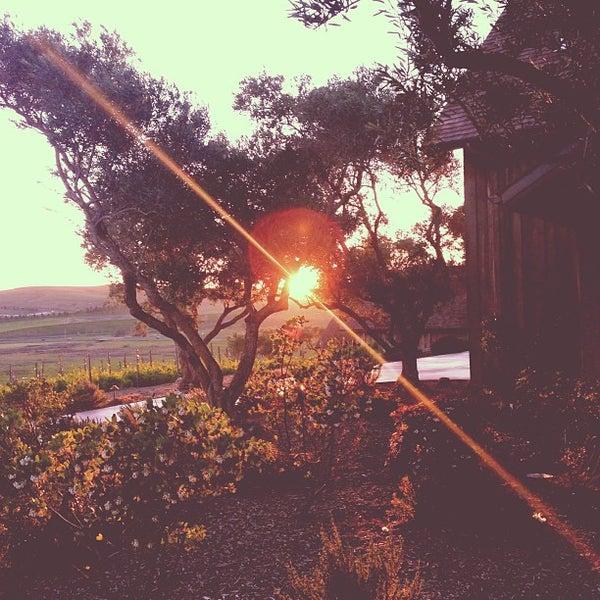 รูปภาพถ่ายที่ Ram's Gate Winery โดย Nimisha เมื่อ 2/12/2013