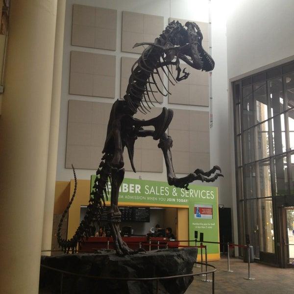 รูปภาพถ่ายที่ Denver Museum of Nature and Science โดย Eric A. เมื่อ 1/15/2013