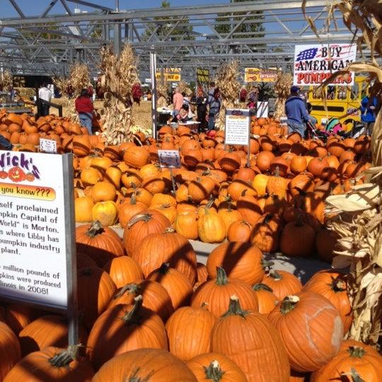 Foto tirada no(a) Nick's Garden Center & Farm Market por razz c. em 10/14/2012