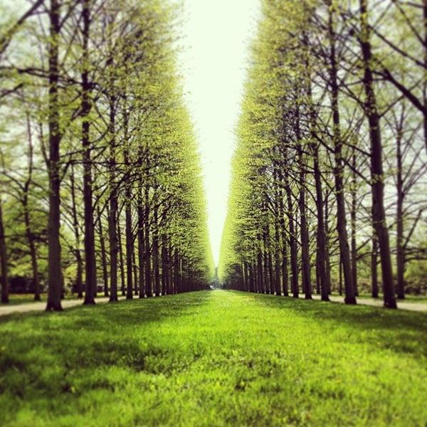 Photos At Französischer Garten Park In Celle