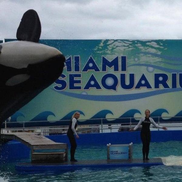 Снимок сделан в Miami Seaquarium пользователем Erika ~🐶~ 3/26/2013