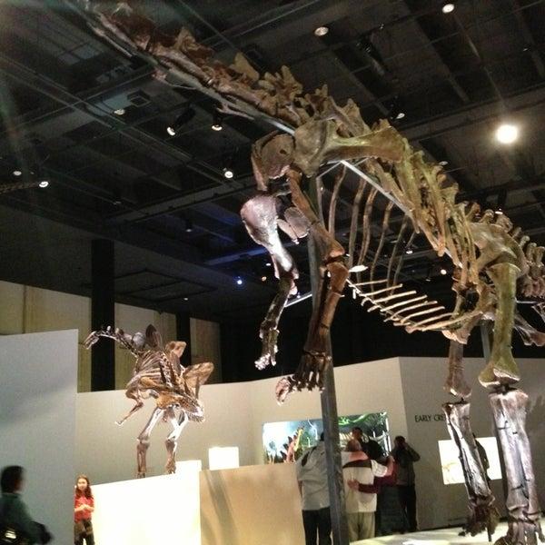 Foto scattata a Houston Museum of Natural Science da Victor B. il 12/29/2012