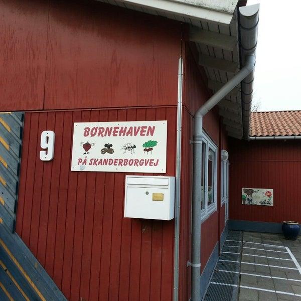 børnehaven firkløveren