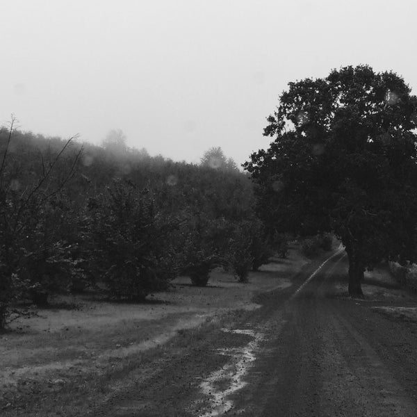 Photo prise au Winter's Hill Estate Vineyard & Winery par Steven N. le10/9/2016