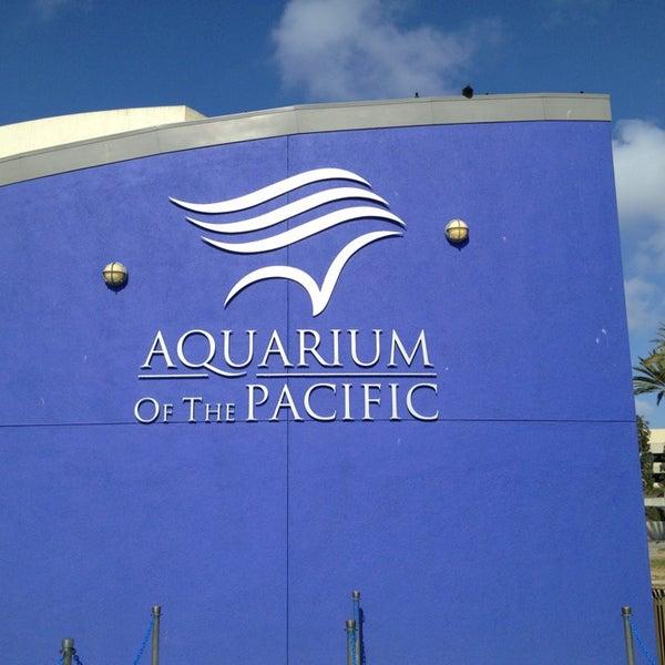 Das Foto wurde bei Aquarium of the Pacific von Jason O. am 5/18/2013 aufgenommen