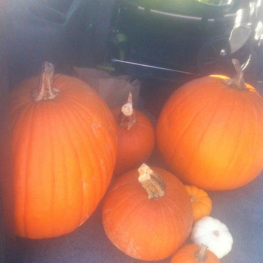 Foto tirada no(a) Nick's Garden Center & Farm Market por Amanda P. em 10/14/2012