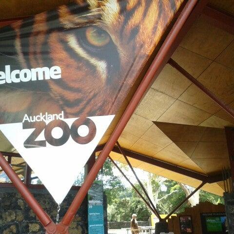 2/25/2015 tarihinde Eliel C.ziyaretçi tarafından Auckland Zoo'de çekilen fotoğraf