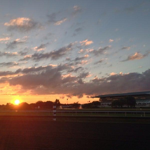 9/3/2013にZaceij B.がArlington International Racecourseで撮った写真