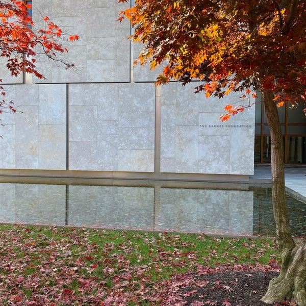 11/14/2020 tarihinde Brynn S.ziyaretçi tarafından The Barnes Foundation'de çekilen fotoğraf