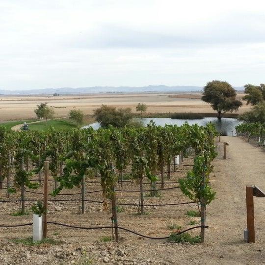 รูปภาพถ่ายที่ Ram's Gate Winery โดย Michael S. เมื่อ 10/21/2012
