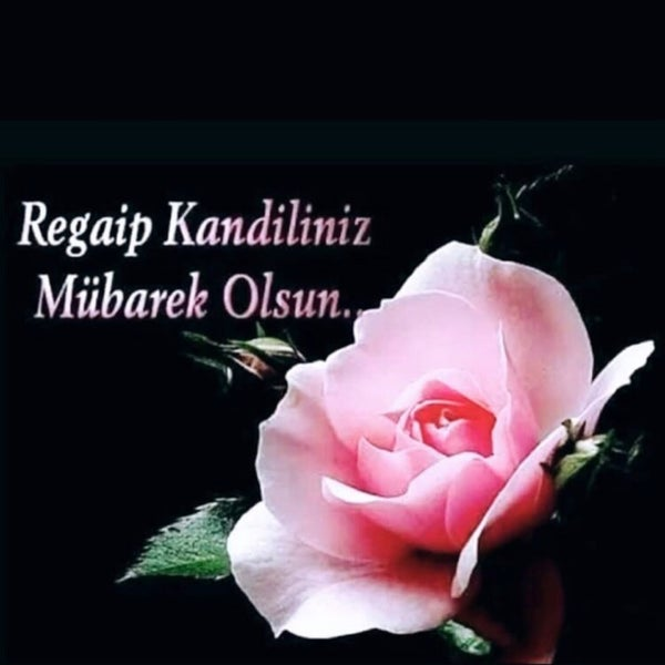 2/18/2021にA.ÖZ B.がPark Afyonで撮った写真