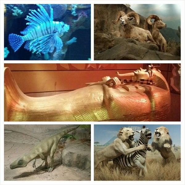 Foto tirada no(a) Las Vegas Natural History Museum por Giselle M. em 9/15/2014