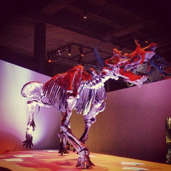 Foto scattata a Houston Museum of Natural Science da Lorraine Mae C. il 6/20/2013
