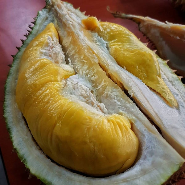 "Photo prise au ""Combat"" Top Quality Durian par iGO le4/16/2017"