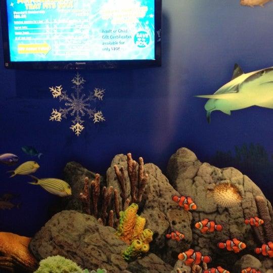 Foto diambil di SEA LIFE Minnesota Aquarium oleh Janus K. pada 12/5/2012