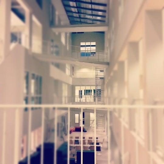 photos at reeshof college - witbrant - tilburg, noord-brabant