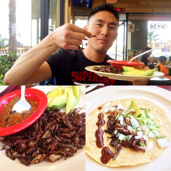 Add grasshoppers to your tacos for that extra crunch!